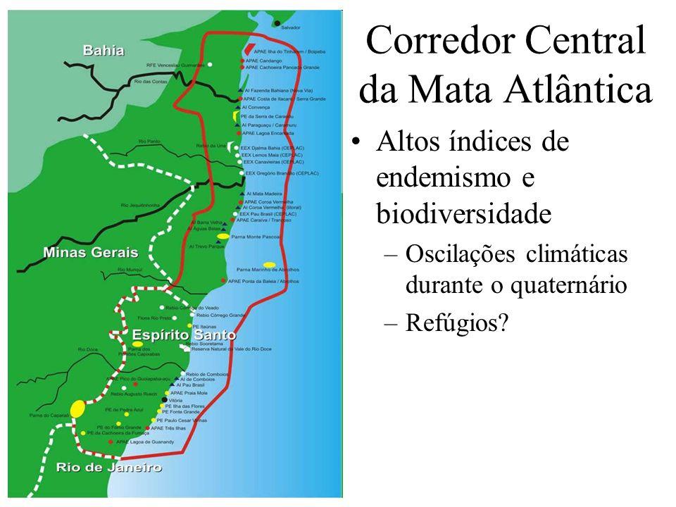 Corredor Central da Mata Atlântica Altos índices de endemismo e biodiversidade –Oscilações climáticas durante o quaternário –Refúgios?