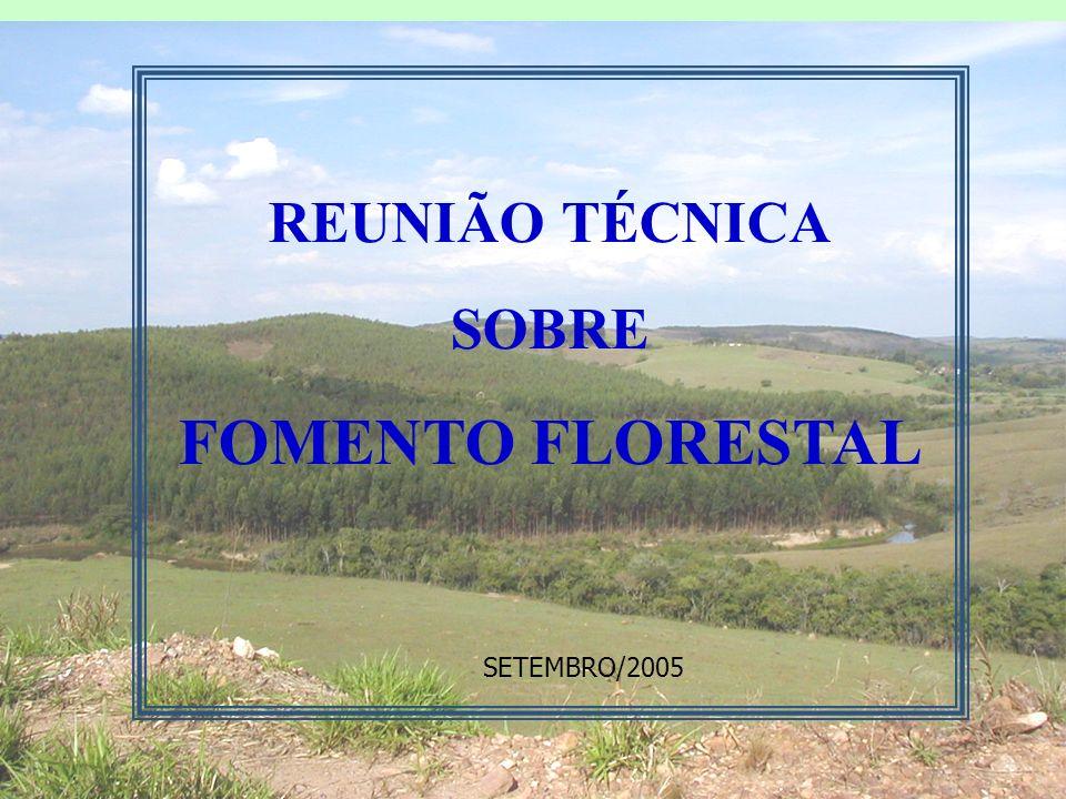 REUNIÃO TÉCNICA SOBRE FOMENTO FLORESTAL SETEMBRO/2005