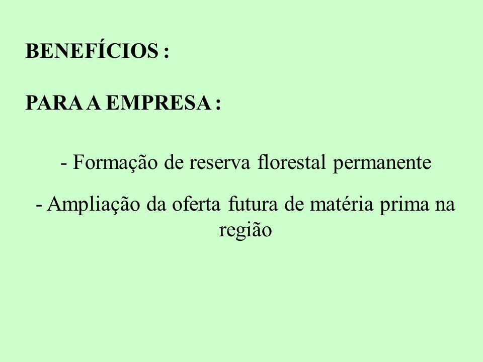 BENEFÍCIOS : PARA A EMPRESA : - Formação de reserva florestal permanente - Ampliação da oferta futura de matéria prima na região