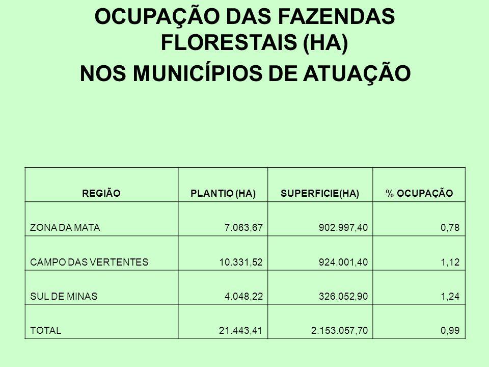 OCUPAÇÃO DAS FAZENDAS FLORESTAIS (HA) NOS MUNICÍPIOS DE ATUAÇÃO REGIÃOPLANTIO (HA)SUPERFICIE(HA)% OCUPAÇÃO ZONA DA MATA7.063,67902.997,400,78 CAMPO DAS VERTENTES10.331,52924.001,401,12 SUL DE MINAS4.048,22326.052,901,24 TOTAL21.443,412.153.057,700,99