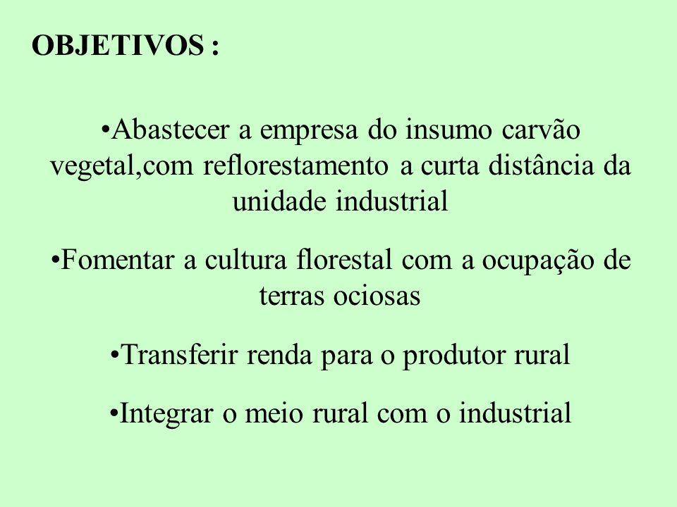 PROGRAMA FAZENDAS FLORESTAIS ITENS DISPONIBILIZADOS POR PROGRAMA IMPLANTAÇÃOÁREA (HA) HORAMUDASADUBOFORMICIDAREC.FINANC.