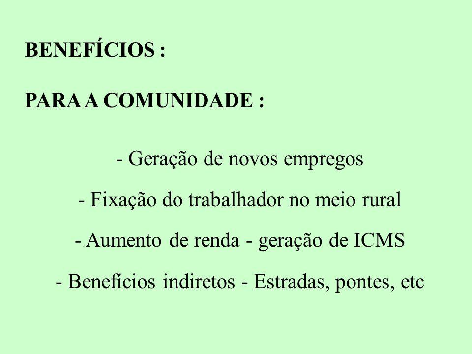 BENEFÍCIOS : PARA A COMUNIDADE : - Geração de novos empregos - Fixação do trabalhador no meio rural - Aumento de renda - geração de ICMS - Benefícios indiretos - Estradas, pontes, etc