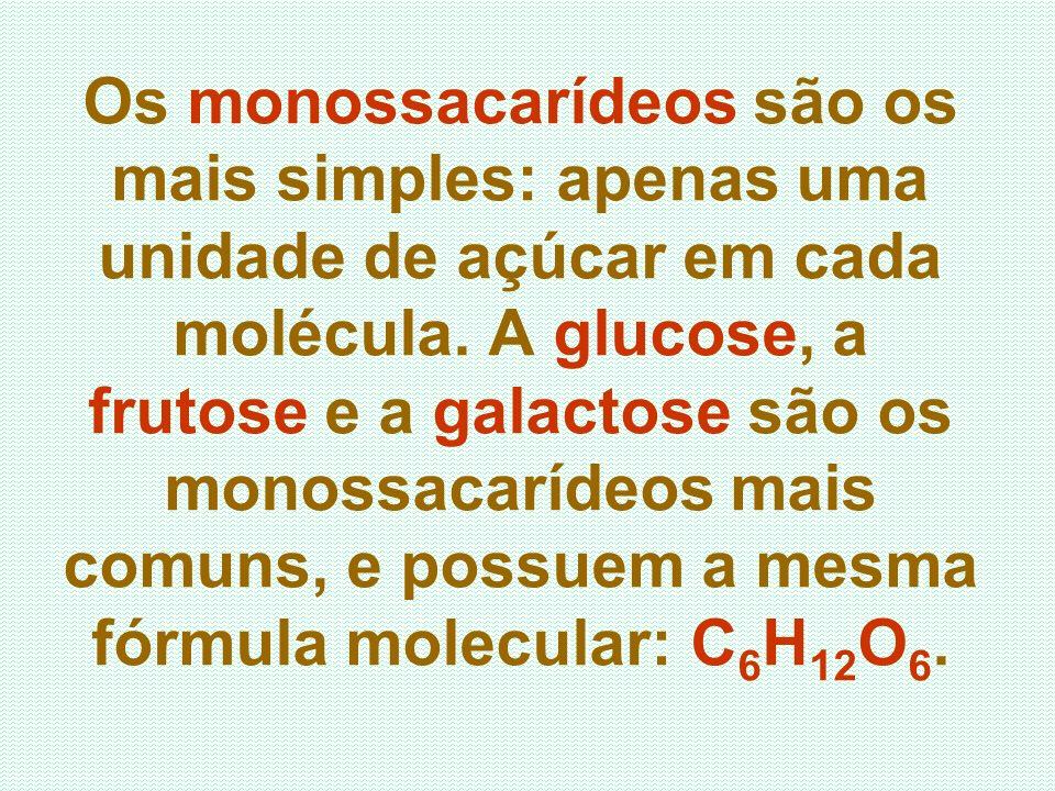 Os monossacarídeos são os mais simples: apenas uma unidade de açúcar em cada molécula. A glucose, a frutose e a galactose são os monossacarídeos mais
