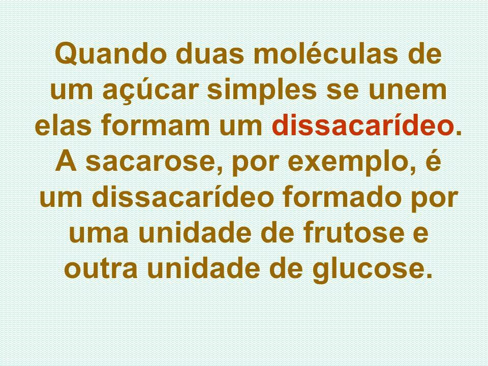 Quando duas moléculas de um açúcar simples se unem elas formam um dissacarídeo. A sacarose, por exemplo, é um dissacarídeo formado por uma unidade de