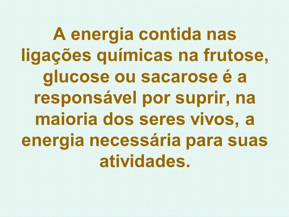 A energia contida nas ligações químicas na frutose, glucose ou sacarose é a responsável por suprir, na maioria dos seres vivos, a energia necessária p
