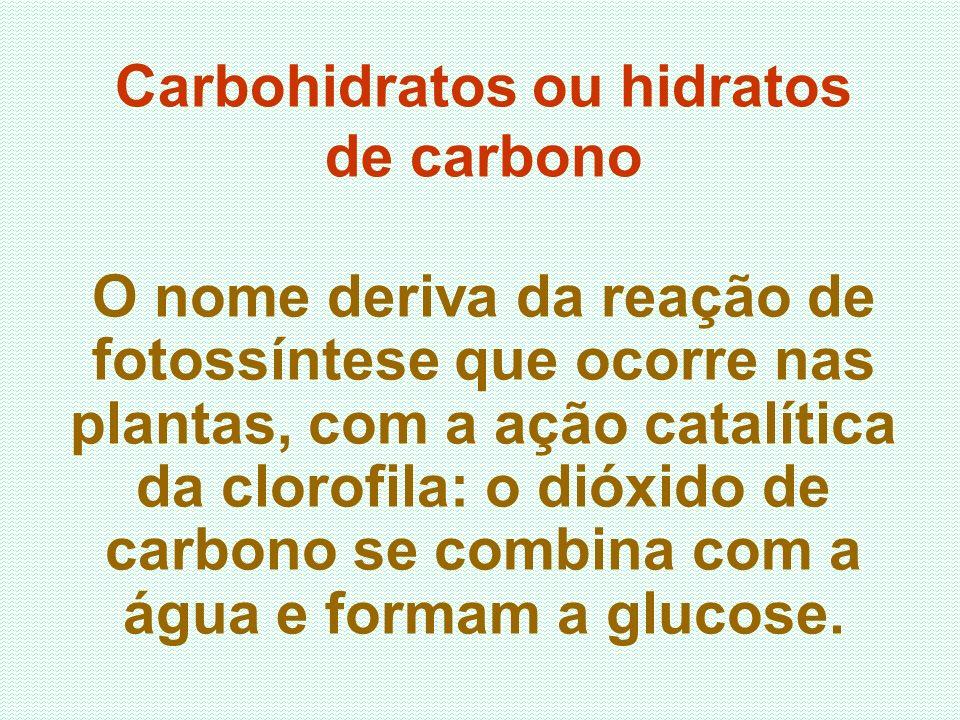 O nome deriva da reação de fotossíntese que ocorre nas plantas, com a ação catalítica da clorofila: o dióxido de carbono se combina com a água e forma