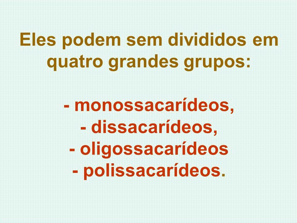 Eles podem sem divididos em quatro grandes grupos: - monossacarídeos, - dissacarídeos, - oligossacarídeos - polissacarídeos.