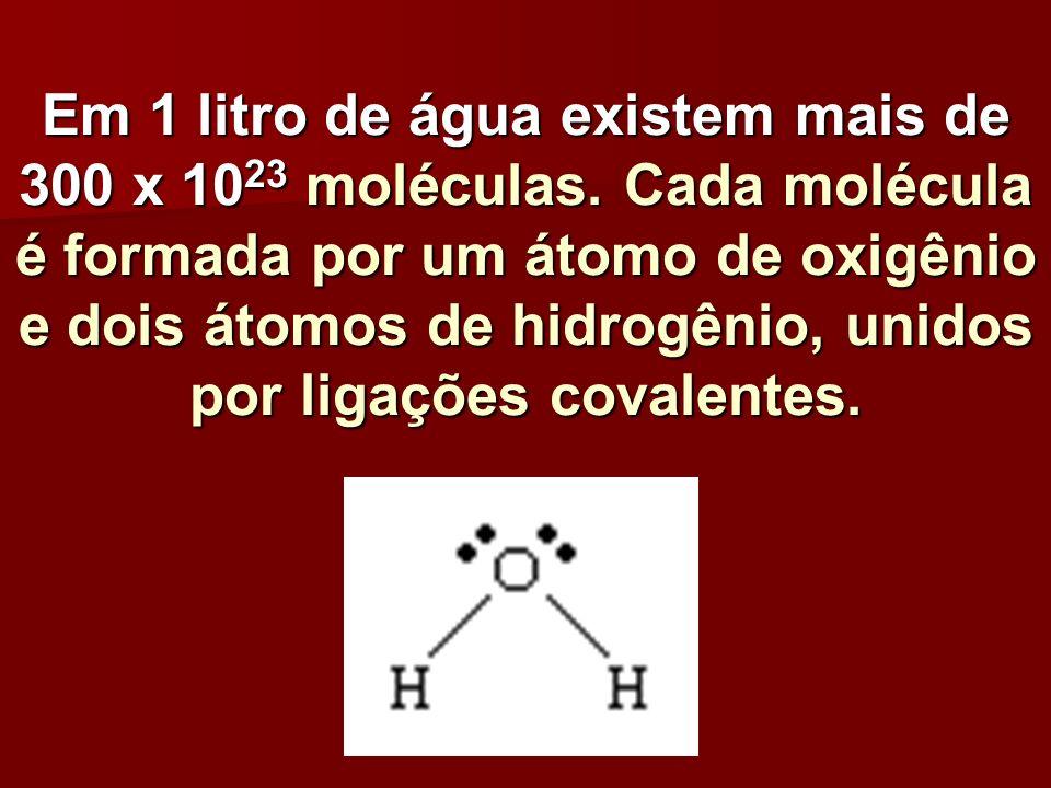 Em 1 litro de água existem mais de 300 x 10 23 moléculas. Cada molécula é formada por um átomo de oxigênio e dois átomos de hidrogênio, unidos por lig