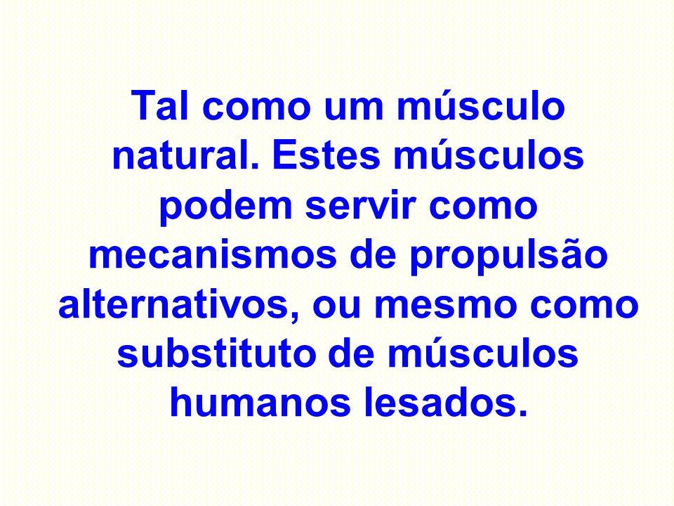 Tal como um músculo natural. Estes músculos podem servir como mecanismos de propulsão alternativos, ou mesmo como substituto de músculos humanos lesad