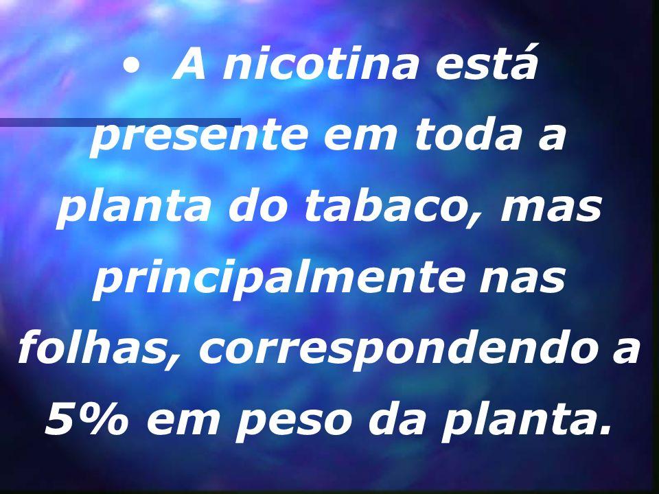 A nicotina é um composto orgânico, e é o principal alcalóide do tabaco. (Alcalóides são compostos orgânicos nitrogenados provindo de plantas, que tem