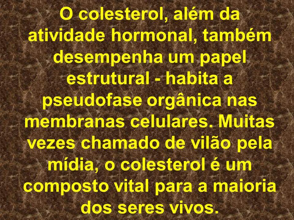 O colesterol, além da atividade hormonal, também desempenha um papel estrutural - habita a pseudofase orgânica nas membranas celulares. Muitas vezes c