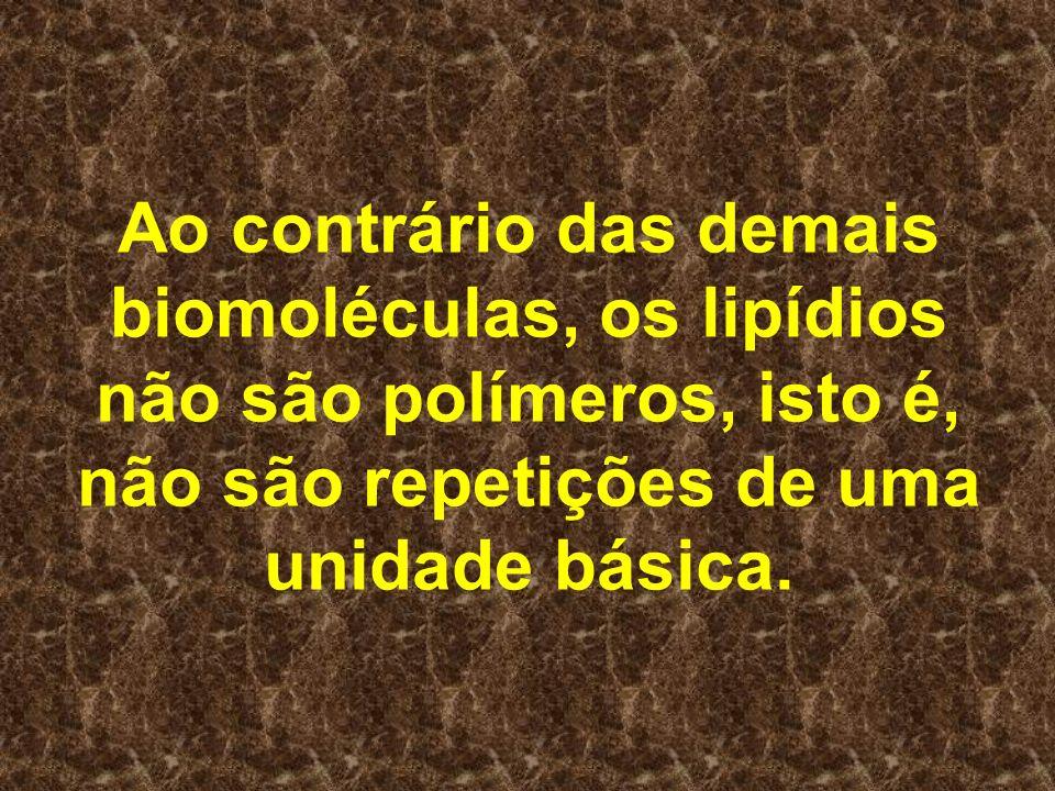 Ao contrário das demais biomoléculas, os lipídios não são polímeros, isto é, não são repetições de uma unidade básica.
