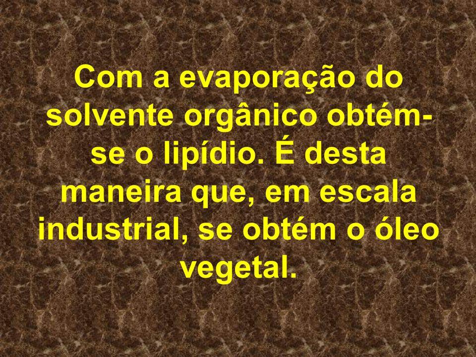 Com a evaporação do solvente orgânico obtém- se o lipídio. É desta maneira que, em escala industrial, se obtém o óleo vegetal.