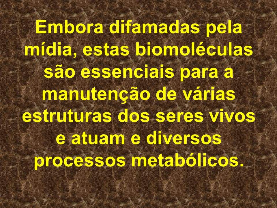 Embora difamadas pela mídia, estas biomoléculas são essenciais para a manutenção de várias estruturas dos seres vivos e atuam e diversos processos met