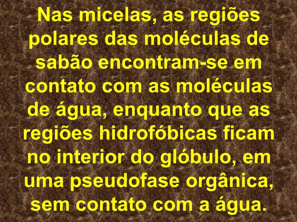 Nas micelas, as regiões polares das moléculas de sabão encontram-se em contato com as moléculas de água, enquanto que as regiões hidrofóbicas ficam no