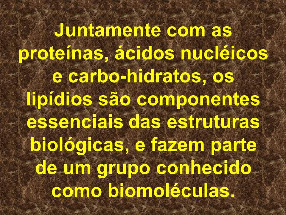 Juntamente com as proteínas, ácidos nucléicos e carbo-hidratos, os lipídios são componentes essenciais das estruturas biológicas, e fazem parte de um