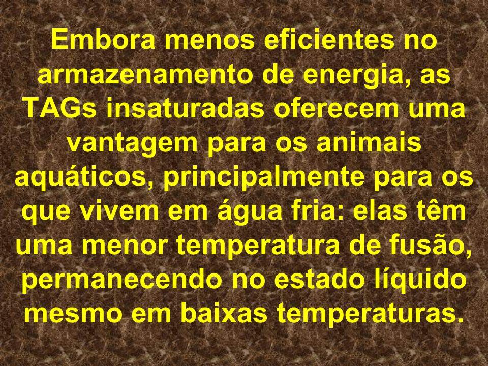 Embora menos eficientes no armazenamento de energia, as TAGs insaturadas oferecem uma vantagem para os animais aquáticos, principalmente para os que v