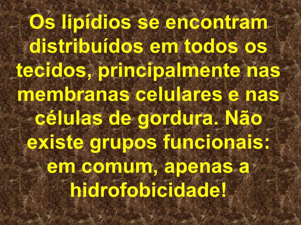Os lipídios se encontram distribuídos em todos os tecidos, principalmente nas membranas celulares e nas células de gordura. Não existe grupos funciona