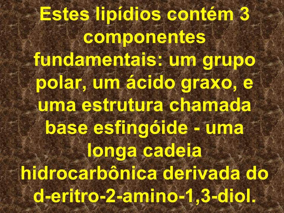 Estes lipídios contém 3 componentes fundamentais: um grupo polar, um ácido graxo, e uma estrutura chamada base esfingóide - uma longa cadeia hidrocarb