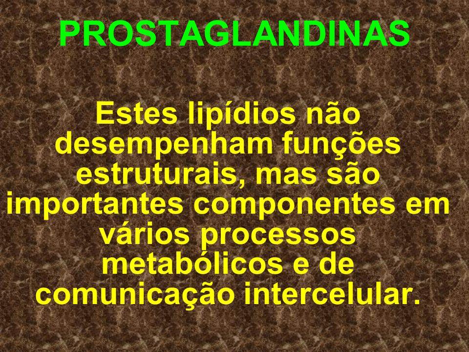 PROSTAGLANDINAS Estes lipídios não desempenham funções estruturais, mas são importantes componentes em vários processos metabólicos e de comunicação i