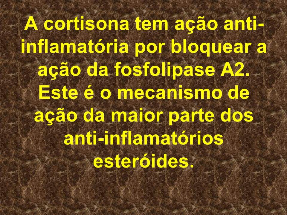 A cortisona tem ação anti- inflamatória por bloquear a ação da fosfolipase A2. Este é o mecanismo de ação da maior parte dos anti-inflamatórios esteró