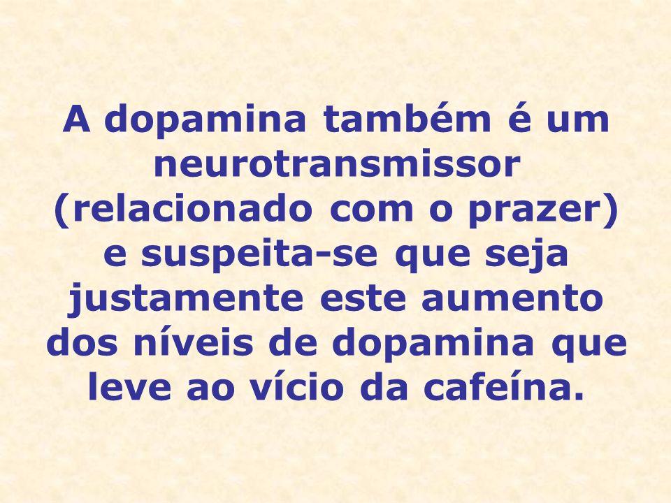 A dopamina também é um neurotransmissor (relacionado com o prazer) e suspeita-se que seja justamente este aumento dos níveis de dopamina que leve ao v