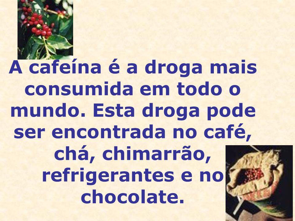 A cafeína é a droga mais consumida em todo o mundo. Esta droga pode ser encontrada no café, chá, chimarrão, refrigerantes e no chocolate.