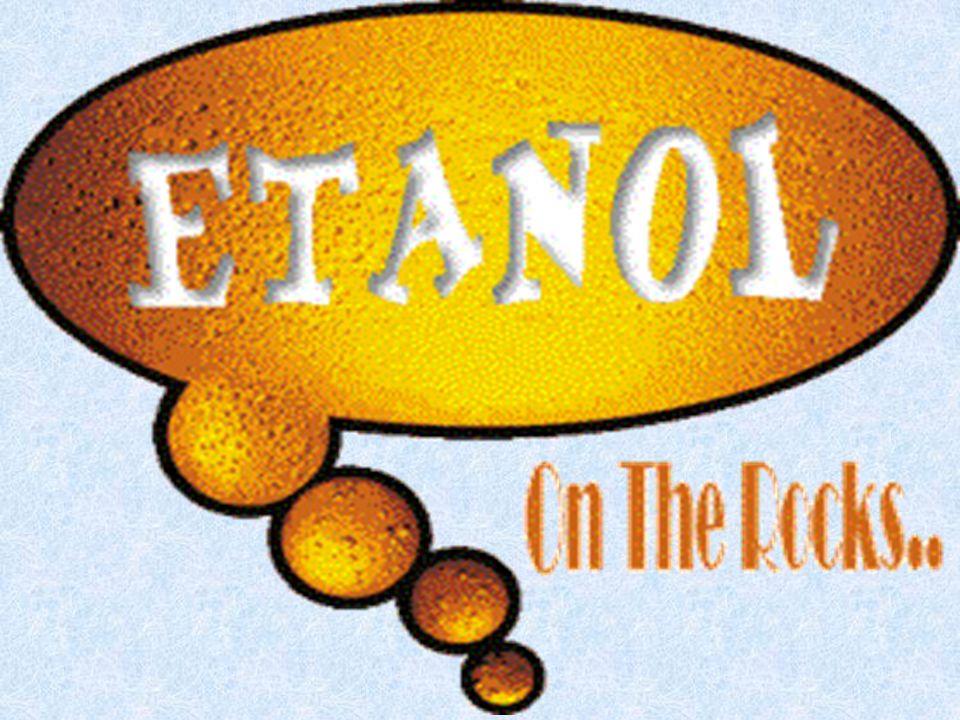 Quando uma bebida alcoólica é ingerida, o etanol é absorvido no intestino delgado e distribuído pelo corpo - sendo que mais etanol é encontrado no sangue e no cérebro do que nos músculos e tecidos adiposos.
