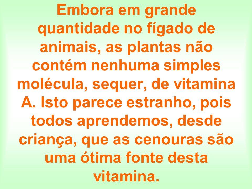 Embora em grande quantidade no fígado de animais, as plantas não contém nenhuma simples molécula, sequer, de vitamina A. Isto parece estranho, pois to