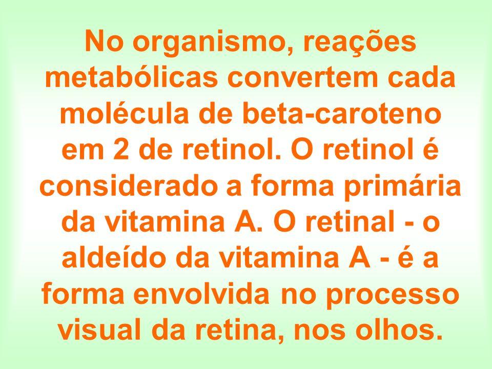 No organismo, reações metabólicas convertem cada molécula de beta-caroteno em 2 de retinol. O retinol é considerado a forma primária da vitamina A. O