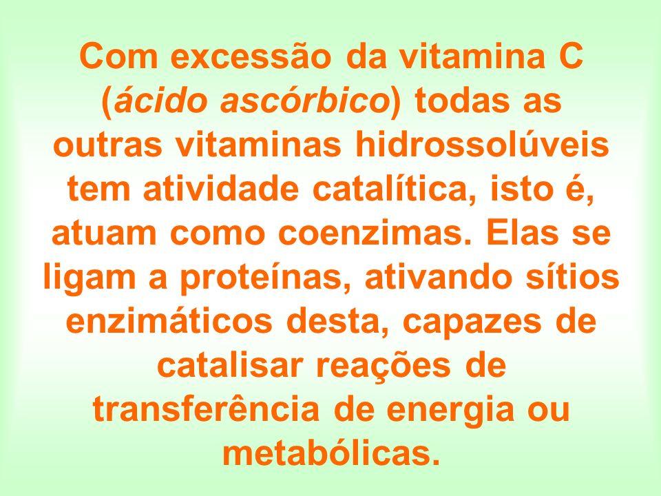 Com excessão da vitamina C (ácido ascórbico) todas as outras vitaminas hidrossolúveis tem atividade catalítica, isto é, atuam como coenzimas. Elas se