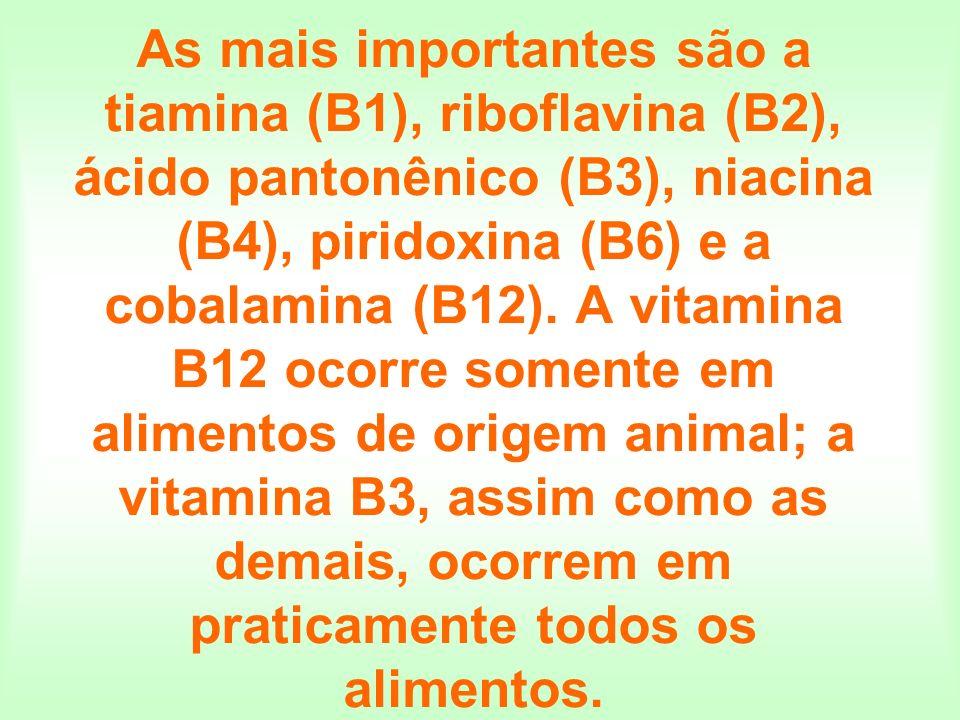 As mais importantes são a tiamina (B1), riboflavina (B2), ácido pantonênico (B3), niacina (B4), piridoxina (B6) e a cobalamina (B12). A vitamina B12 o