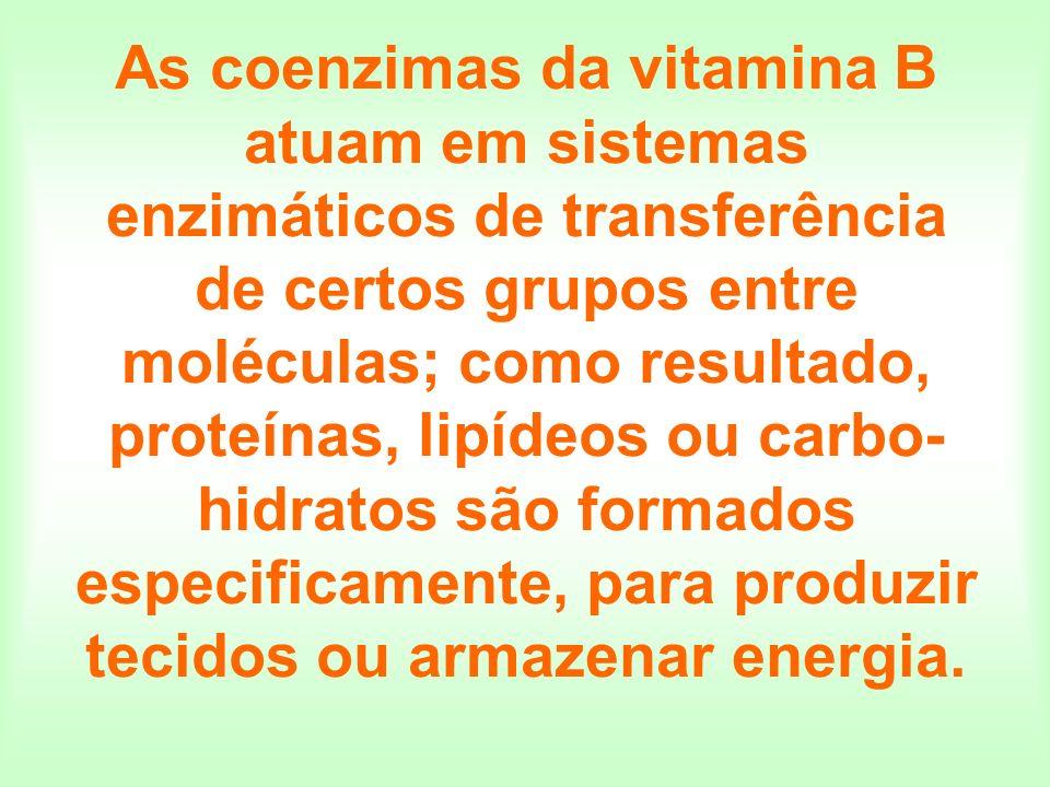 As coenzimas da vitamina B atuam em sistemas enzimáticos de transferência de certos grupos entre moléculas; como resultado, proteínas, lipídeos ou car