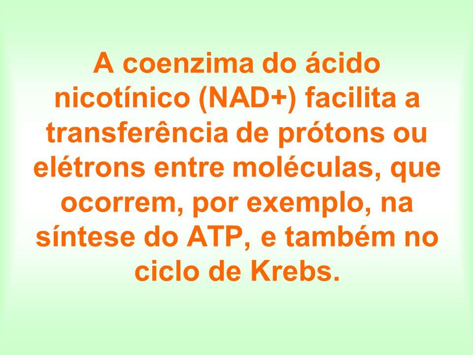 A coenzima do ácido nicotínico (NAD+) facilita a transferência de prótons ou elétrons entre moléculas, que ocorrem, por exemplo, na síntese do ATP, e