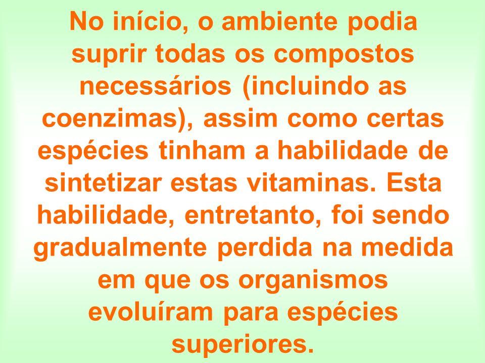 No início, o ambiente podia suprir todas os compostos necessários (incluindo as coenzimas), assim como certas espécies tinham a habilidade de sintetiz