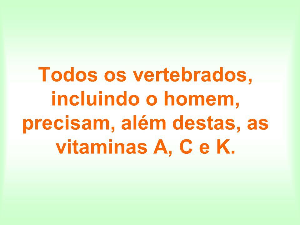Todos os vertebrados, incluindo o homem, precisam, além destas, as vitaminas A, C e K.
