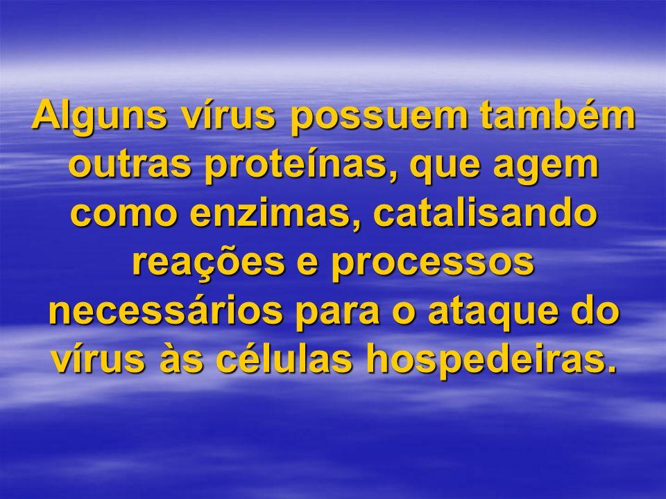 Alguns vírus possuem também outras proteínas, que agem como enzimas, catalisando reações e processos necessários para o ataque do vírus às células hos