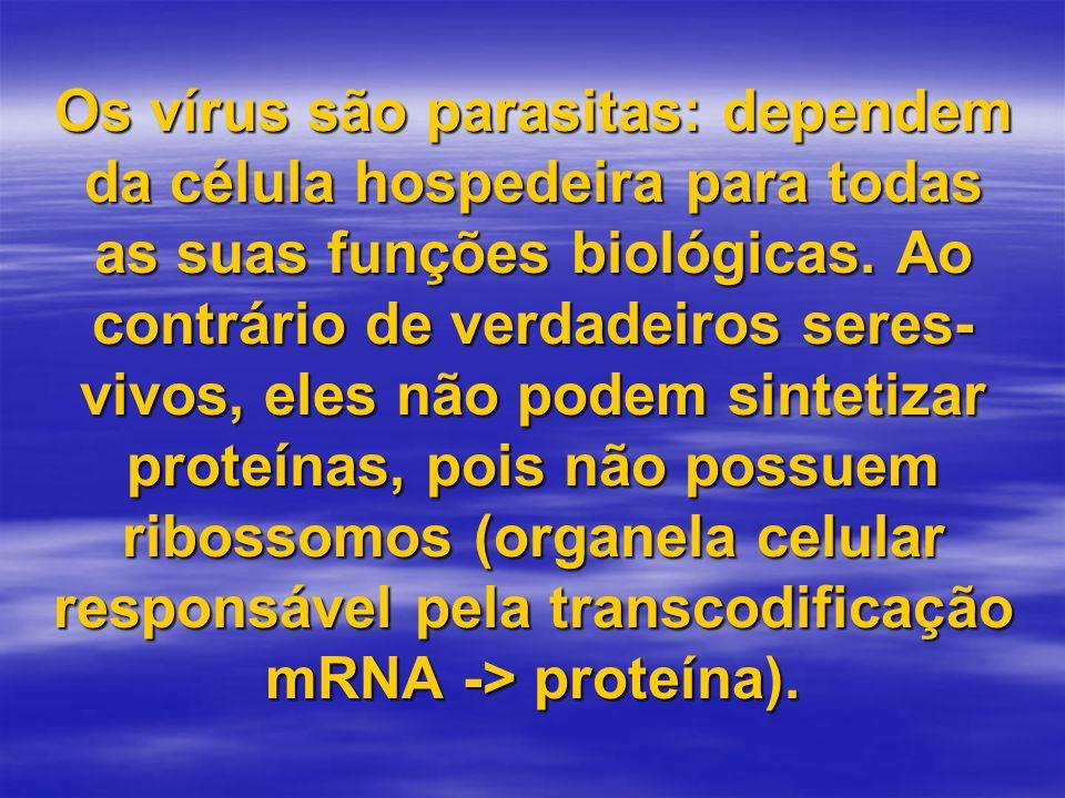 Os vírus são parasitas: dependem da célula hospedeira para todas as suas funções biológicas. Ao contrário de verdadeiros seres- vivos, eles não podem