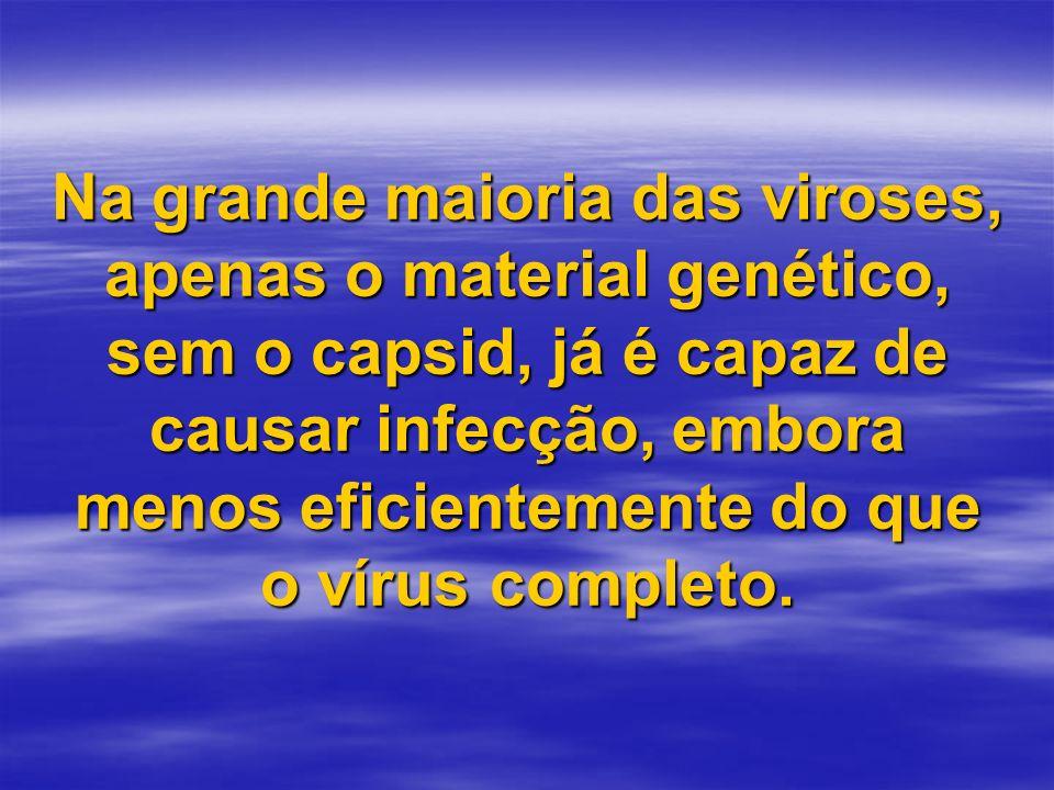 Na grande maioria das viroses, apenas o material genético, sem o capsid, já é capaz de causar infecção, embora menos eficientemente do que o vírus com