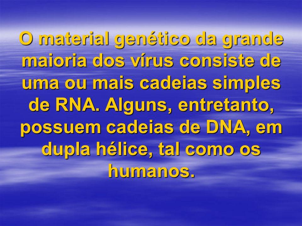 O material genético da grande maioria dos vírus consiste de uma ou mais cadeias simples de RNA. Alguns, entretanto, possuem cadeias de DNA, em dupla h