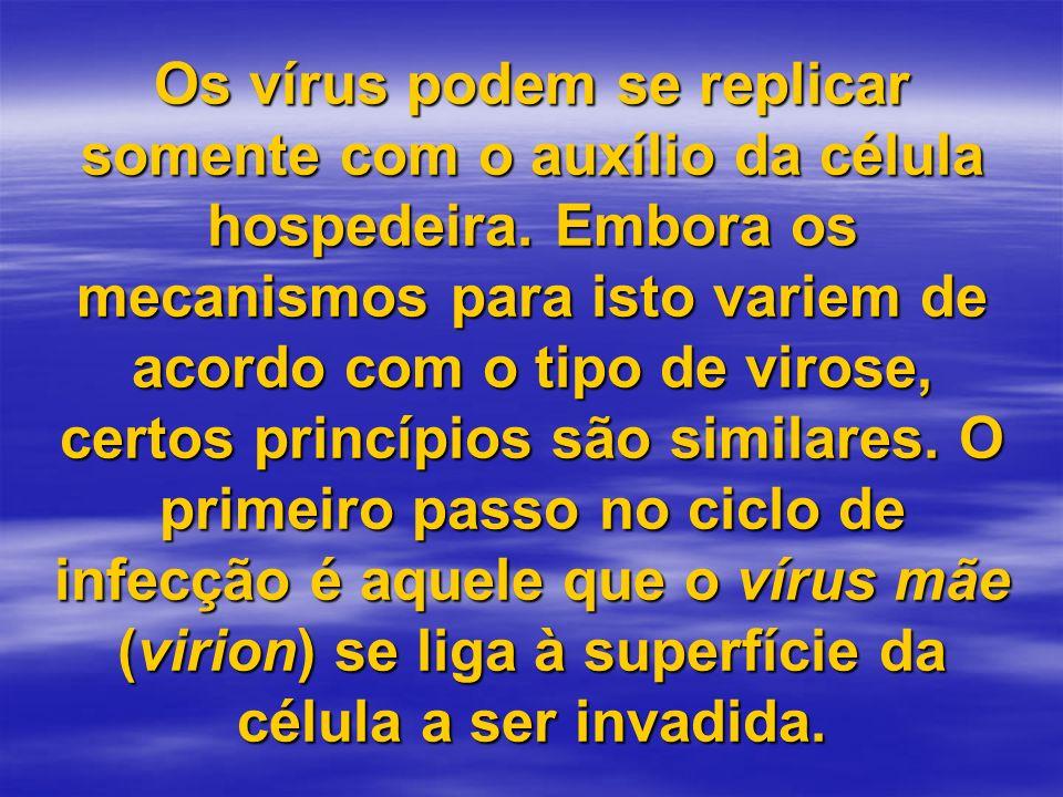 Os vírus podem se replicar somente com o auxílio da célula hospedeira. Embora os mecanismos para isto variem de acordo com o tipo de virose, certos pr