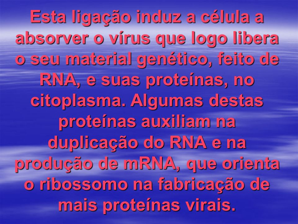 Esta ligação induz a célula a absorver o vírus que logo libera o seu material genético, feito de RNA, e suas proteínas, no citoplasma. Algumas destas
