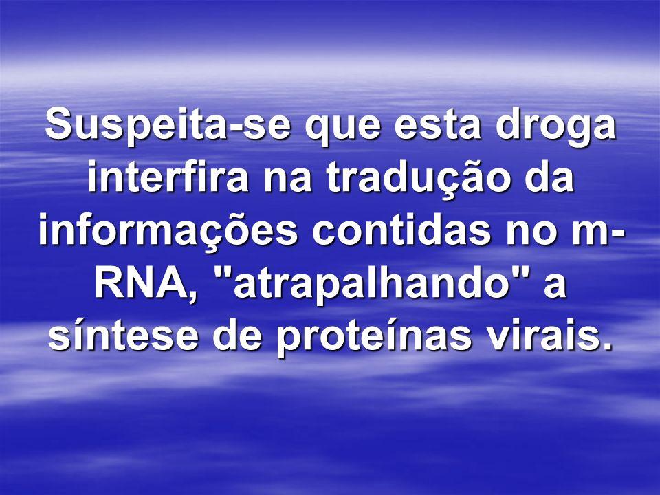 Suspeita-se que esta droga interfira na tradução da informações contidas no m- RNA,