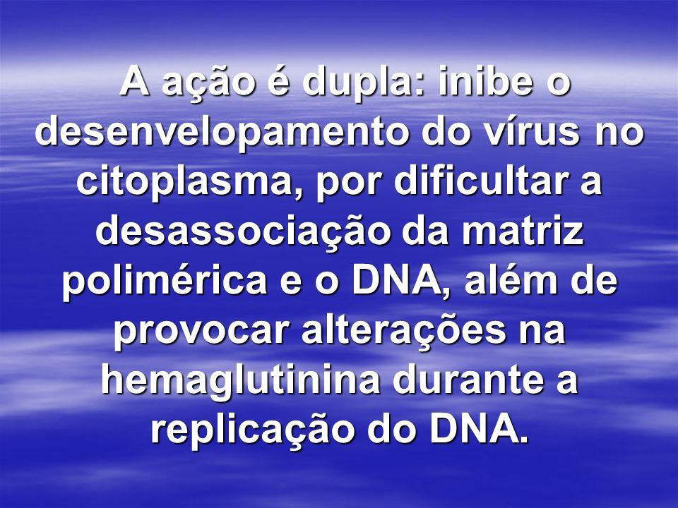 A ação é dupla: inibe o desenvelopamento do vírus no citoplasma, por dificultar a desassociação da matriz polimérica e o DNA, além de provocar alteraç