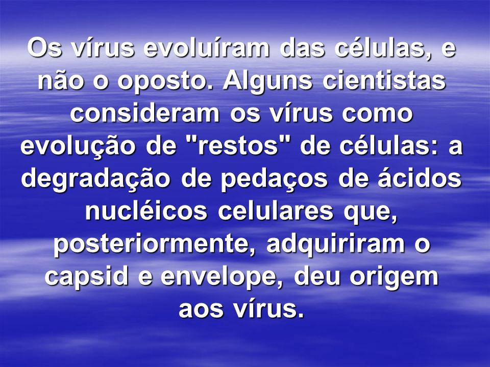 Os vírus evoluíram das células, e não o oposto. Alguns cientistas consideram os vírus como evolução de