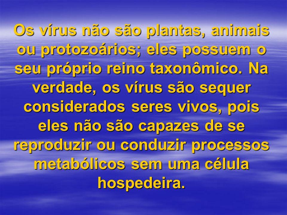 Os vírus não são plantas, animais ou protozoários; eles possuem o seu próprio reino taxonômico. Na verdade, os vírus são sequer considerados seres viv