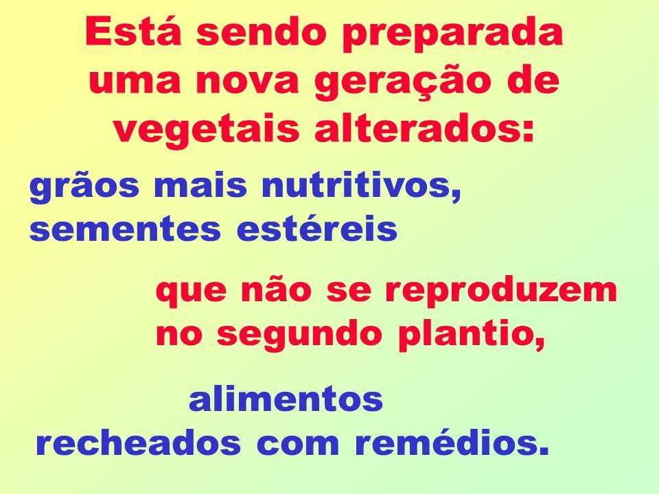 Está sendo preparada uma nova geração de vegetais alterados: grãos mais nutritivos, sementes estéreis que não se reproduzem no segundo plantio, alimentos recheados com remédios.