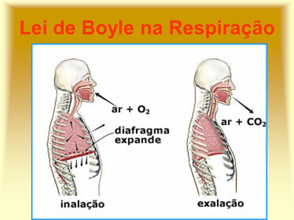 Lei de Boyle na Respiração