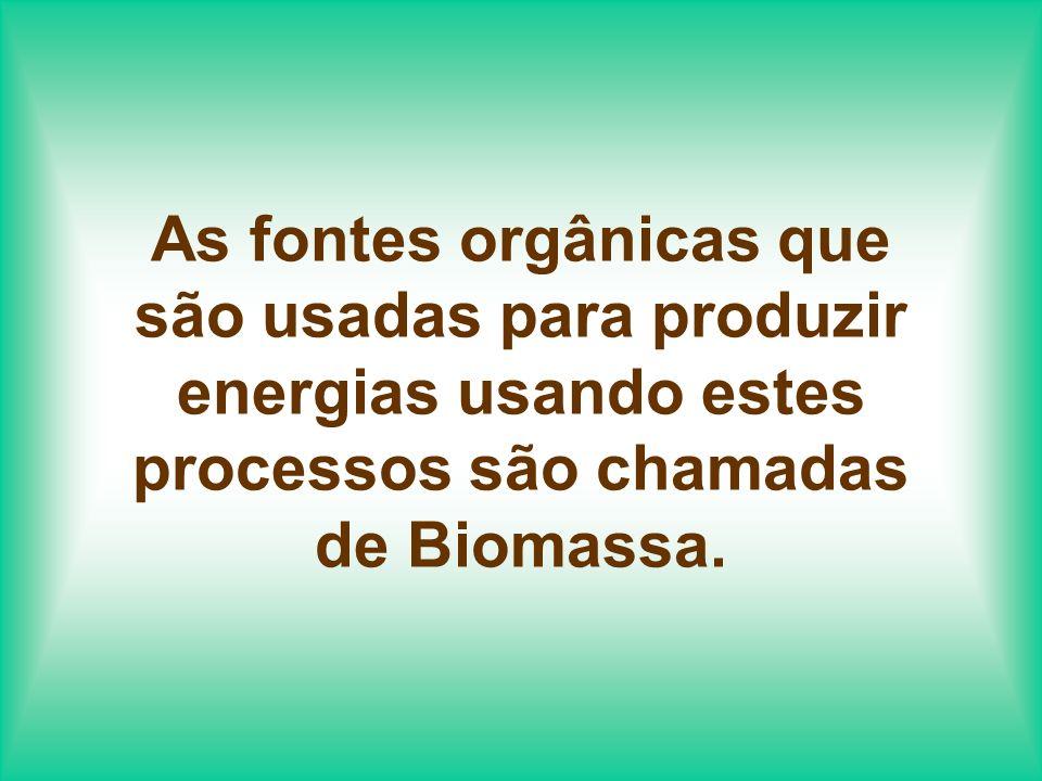 BIOMASSA: Os mais comuns combustíveis da Biomassa são resíduos agrícolas, madeira e plantas como cana-de-açúcar, que são colhidas com o propósito de gerar energia.