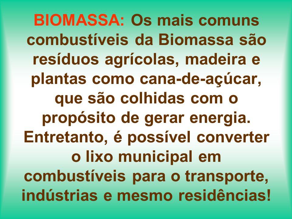 Já existem milhares de casas e indústrias que utilizam biomassa como energia.